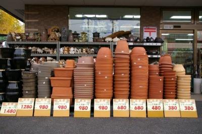 信楽焼の植木鉢 数量限定で特価販売中!